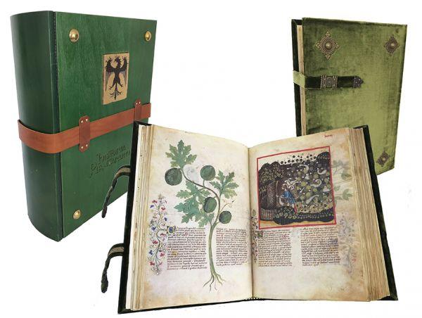 Historia Plantarum (Tacuinum Sanitatis)
