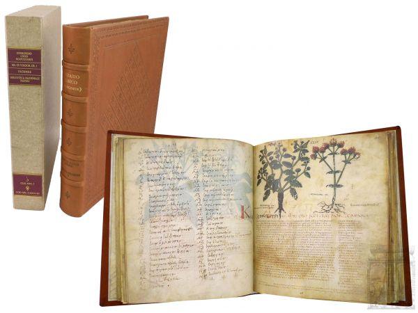 Dioskurides. Codex Neapolitanus