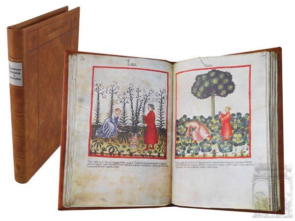 Tacuinum Sanitatis in Medicina (Das Cerutti-Hausbuch)