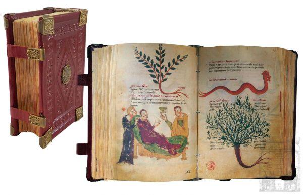 Medicina y Farmacia de Frederico II. = Codex Cosimo de Medici - Dioskurides für Friedrich II. - Code