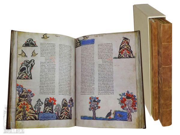 Falkenbuch Friedrichs II. (De Arte Venandi Cum Aribus)