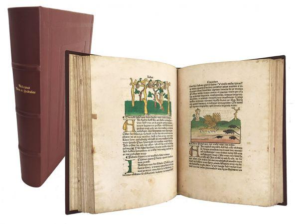 Aesopus - Vita et Fabulae (=Ulmer Aesop)